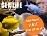 SeaLife hait